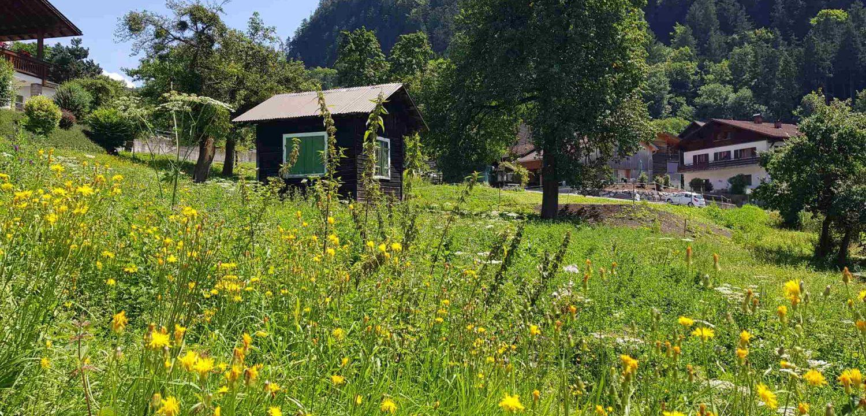 Rungelin Grundstück, Bludenz